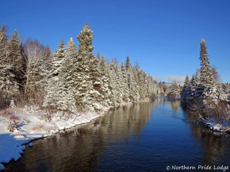 Roach River